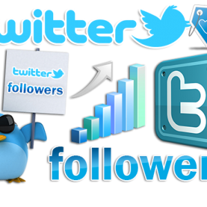 Buy Twitter Followers, Buy Twitter Retweets, Buy views and Links cheap cost.